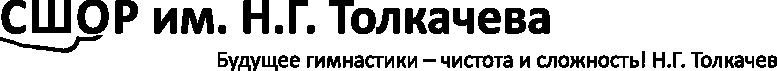 СШОР им. Н.Г. Толкачева
